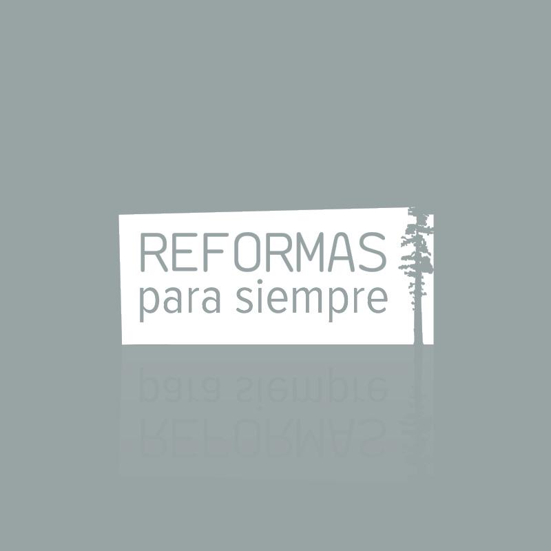 LOGOS_2013_0012_reformas_para_siempre-07 copia