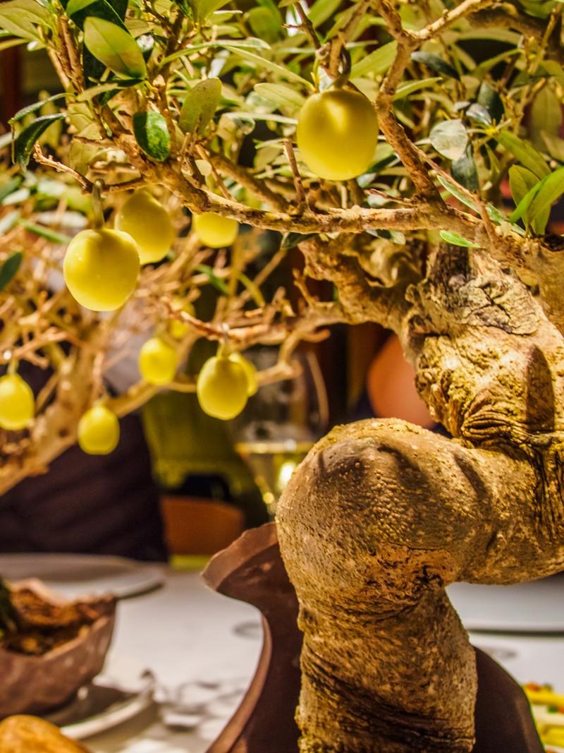Gelat d'oliva verda